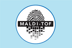 MALDI-TOF质谱鉴定
