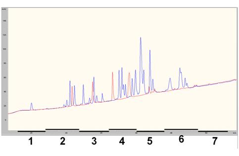 蛋白质组学中蛋白质和肽段分离方法的比较