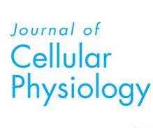 2019-FHL1通过与LC3相互作用来调节成肌细胞的分化和自噬 -四川农业大学-JOURNAL OF CELLULAR PHYSIOLOGY (IF:3.89)