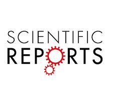 2020-基于TMT标记定量蛋白质组学人大骨节病机理分析-西安交通大学-Scientific Reports(IF:4.29)
