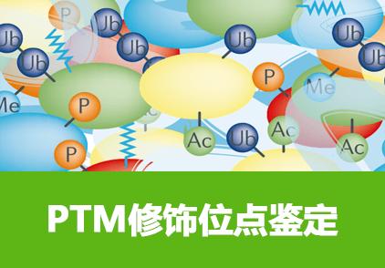 PTM位点质谱分析