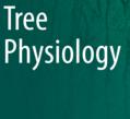 2020-镁缺乏对柑橘叶片叶脉影响的分子机理研究-福建农林大学-Tree Physiol(IF:3.67)
