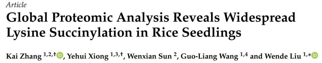 IJMS2019-广泛水稻幼苗赖氨酸琥珀酰化蛋白质组学分析