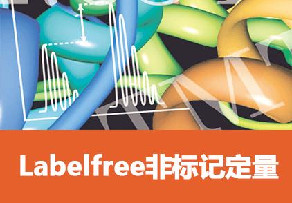 LabelFree非标定量